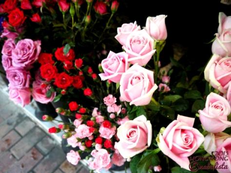 Ena HK2 6 Roses2