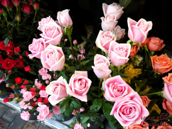 Ena HK2 6 Roses3