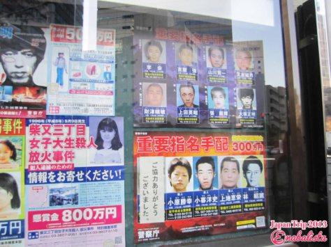Ena Japan 2013 17