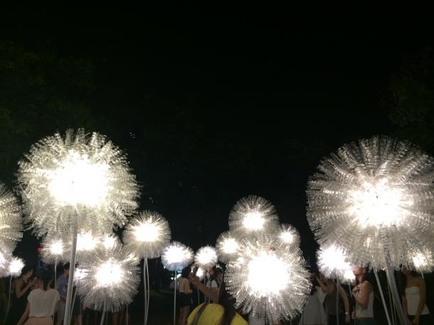 I lights Singapore Enabalista 21a