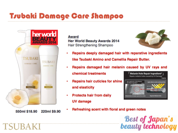 Shiseido Brands Winning Products 2014 4 6